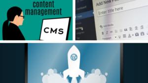 gestor de contenidos diseño web shokaweb